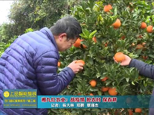 《行走石门》栏目走进湖南raybet电竞竞猜app农业科技有限公司